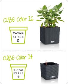 CUBE Color Größenvergleich