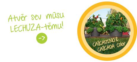 Atvēr sev mūsu Lechuza - tēmu: CASCADA CASCADINO