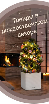 LECHUZA празднует Новый год и Рождество